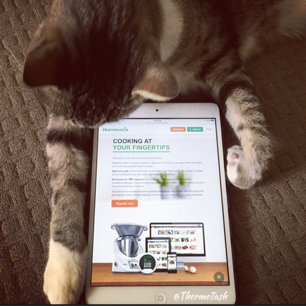 ThermoCat loves the Thermomix Recipe Platform