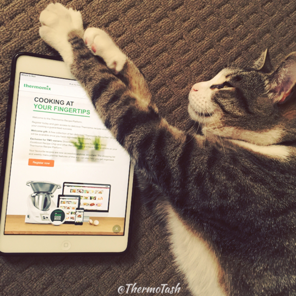 ThermoCat loves My-Thermomix Recipe Platform