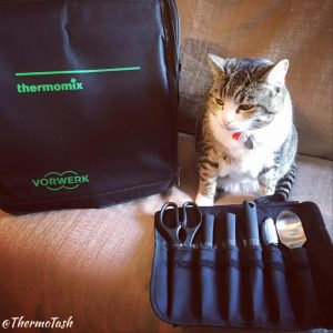 ThermoCat_ThermoTravel