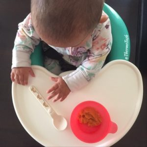 Thermomix baby sweet potato puree